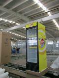 Lärmarme einzelne Tür-aufrechte Kühlvorrichtung mit Kabinendach