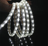 部屋装飾的なETL SMD3528は白いLEDのストリップを暖める