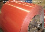 Il doppio strato di colore di Ccgi/colore ricoperto ha galvanizzato la bobina d'acciaio