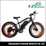 子供のための脂肪質のタイヤが付いている電気自転車