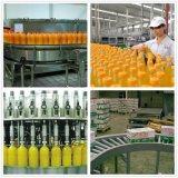 Pleine chaîne de production de jus d'assaisonnement de vente de dessus de qualité d'Automaitc installation de transformation de jus de fruits de matériel d'usine de jus