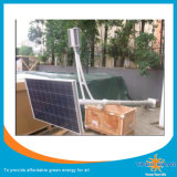 Lampada insetticida solare economizzatrice d'energia (SZYL-SIL-06)