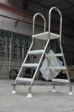 Fabricante do FL acima da escada tomada o partido dobro à terra da associação Ss304