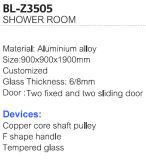 Populärer Aluminiumlegierung-gestalteter Glasdusche-Raum (BL-Z3505)