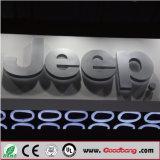 Signage логоса имени автомобиля эпоксидной смолы 3D