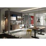Tipo linear grão de madeira e gabinetes de cozinha brancos da laca de Matt