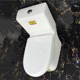 Ovs keramische Badezimmer-beste Auslegung-Toiletten-bündiges Ventil