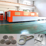 Machine de découpage à grande vitesse de laser de fibre du découpage 500W de feuillard