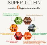 Lutein natural para aditivos de alimento e nutriente da substância corante