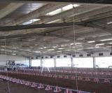 Полинянная хранением структура обработанная начисто сталь чертежа магазина стальной структуры, сарай стальной структуры птицефермы
