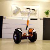 Wind-Vagabund weg Rad-elektrischen stehenden dem Roller von der Straßen-2