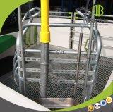 Пер новой конструкции клети открытое для хавроньи с хорошим ценой