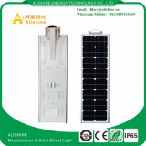Lampada solare del giardino Integrated di energia solare 30W per la via esterna