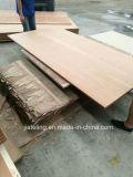 Impermeabilizar la tarjeta de suelo del envase de 28m m/el suelo de la madera contrachapada de Keruing Apitong
