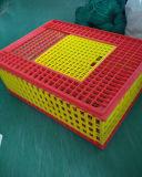Ente-Plastiktransport-Rahmen/Geflügel-Umsatz-Kasten