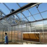 중국 다중 경간 두 배 필름 Hydroponic 온실