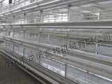 フルオートマチックの家禽装置の層のケージシステムの128羽の鳥Hフレームの4つの層