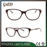 Späteste neue Entwurfs-Azetat Eyewear Brille-optischer Spant 50-325