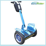 Sale 2000W 72V都市Road Scooterのための電気Chariot