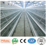Galvanized Chicken Breeding Farm Small Layer Cage with Automatic Feeding