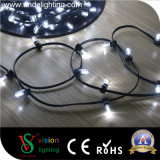 IP68 나무 훈장 LED 끈 빛