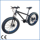 سمينة رمز/[سنوو تير] درّاجة [بيسكلتا] درّاجة سمينة ([أكم-1235])
