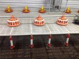 Het Huis van de Kip van de Structuur van het staal voor het Landbouwbedrijf van het Gevogelte