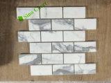 Mosaico di marmo dell'Italia Calacatta, mattonelle di pavimento di marmo bianche polacche del mosaico di Calacatta