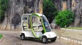Автомобиль 2 мест миниый электрический Sightseeing