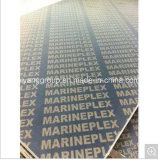 Les panneaux imperméables à l'eau de Formply de contre-plaqué de coffrage/film ont fait face au contre-plaqué pour le béton Shuttering