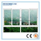 Le guichet en verre horizontal en plastique le plus neuf de glissement du modèle UPVC/PVC de Roomeye