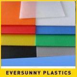 Feuille creuse /Corrugate de pp et feuille en plastique pleine