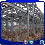 販売のための屋外の大きい縛られたフレームの鉄骨構造