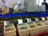 Сортировальная машина сортировщицы веса креветки цыплятины еды