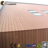 建築材料の装飾的な外壁のパネル
