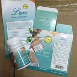 최고 초본 체중 감소 제품, 자연적인 Lipo 규정식 환약