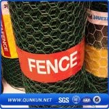 Construção Using o engranzamento de fio soldado galvanizado na venda