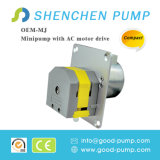 Pompe péristaltique de moteur de C.C personnalisée par qualité mini