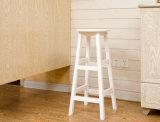 Solid Wood Bar Cadeiras Cadeiras de jantar Modern Chairs (M-X2028)