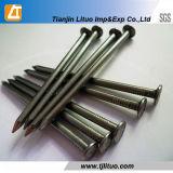 Clavo común galvanizado de la INMERSIÓN galvanizada/caliente Polished/eléctrico