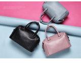 Qualidade de couro de /Hight da bolsa do plutônio das senhoras novas da venda por atacado da forma (MA#1614)