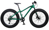 Shimano GearのAlloy軽量のFat Tire Bike