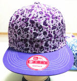 より多くの色刷の布すぐにおよび3つのDの刺繍の野球帽は回復