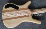 Garganta de W do embutimento do molusco da califórnia do bloco através da guitarra baixa do corpo