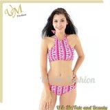 Купальный костюм типа женщин Swimwear Бикини высокого качества новый нажимает вверх Biquinis
