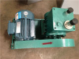 Form-Rand-Abschrägung-Maschine für runden/gerade/Beveling/Og Rand