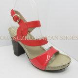 Santal 2012 (YMS001035-01) de cuir de mode de dames