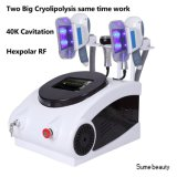 Cavitation rf du vide 40k de Cryolipolysis amincissant Coolsculpting Zeltiq amincissant la machine de beauté