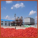 com 30 Years Experience Jd Tomato Paste Machine