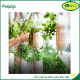 Onlylife Garten-Jutefaser-Gewebe-Blumen-Gemüsepflanzer wachsen Beutel
